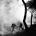 Korean War: Combat, 1951 by Granger