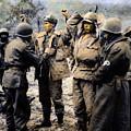 Korean War: Prisoners by Granger