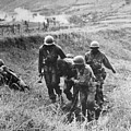 Korean War: Wounded, 1950 by Granger