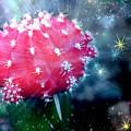 Kozmic Cactus by Robert Butler