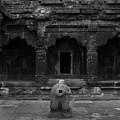 Krishna Devi Temple by Kiran Joshi