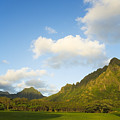 Kualoa Ranch by Dana Edmunds - Printscapes