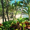 Kuau Beach Cove Paia Maui Hawaii by Sharon Mau
