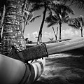 Kuau Palm Trees Hawaiian Outrigger Canoe Paia Maui Hawaii by Sharon Mau