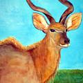 Kudu by Patricia Beebe