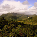 Kuranda Queensland by Tony Brown