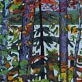 Kushog Colours by Phil Chadwick