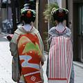 Kyoto Geishas by Jessica Rose