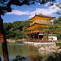 Kyoto by Michele Burgess