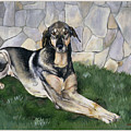 Kyra by Eileen Hale