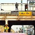 L Stop Cop by Thomas Schaller