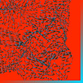 L11-0-214-255-255-41-0-3x3-3000x3000 by Gareth Lewis