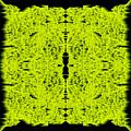 L8-14-215-244-0-1600x1600 by Gareth Lewis