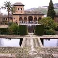 La Alhambra Garden by Thomas Marchessault