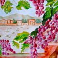 La Casa Del Vino by Sharon Mick