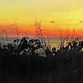 la Casita Playa Hermosa Puntarenas Costa Rica - Sunset A Panorama by Felipe Adan Lerma