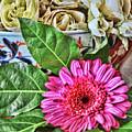 La Flor De La Castellana by Diana Raquel Sainz
