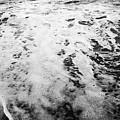 La Mer by Megan Yohn