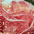 La Petite Rose by Jean OKeeffe Macro Abundance Art