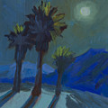 La Quinta Cove And Moonlight by Diane McClary