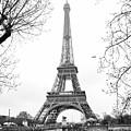 La Tour Eiffel, Paris by Luis Botaro
