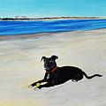 Lab Loving The Beach by Donna Mann