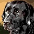 Labrador Retriever by Alexey Bazhan