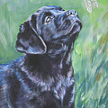 Labrador Retriever Pup And Dragonfly by Lee Ann Shepard