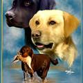 Labrador Retriever With Name Logo by Becky Herrera