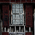 Laced Window by Susie Weaver