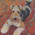 Wire-haried Fox Terrier by Jane Oriel