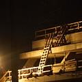 Ladder by Buddy Scott