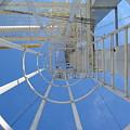 Ladder by Dylan Punke