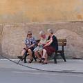 Ladies Of Monterrosa by Tom Tripp