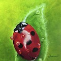 Lady Bug II by Nancy Breiman