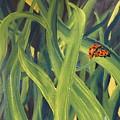 Lady Bugs by Cheryl Nancy Ann Gordon