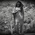 Lady In The Garden 2 by Bill Cannon
