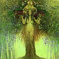 Lady In The Tree by Stefan Duncan