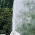 Lady Knox Geyser Erupting by Konrad Wothe