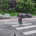 Lady On A Crossing by Roger Booton