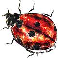 Ladybug by Monique Faella