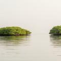 Lagoon In Santa Cruz Island In Galapagos by Marek Poplawski