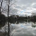 Lagoon Reflections 2 by Anita Burgermeister