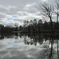 Lagoon Reflections 4 by Anita Burgermeister