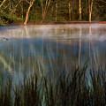 Lagoon Sunrise by Doug Sturgess