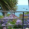 Laguna Beach, Southern California 11 by Larysa Kalynovska