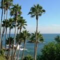Laguna Beach, Southern California 2 by Larysa Kalynovska