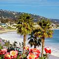 Laguna Beach Springtime Pano by Cliff Wassmann