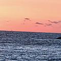 Laguna Beach Sunset by Rosanne Nitti
