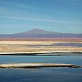 Laguna De Chaxa Salt Lake Chile by James Brunker